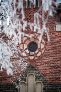 eichw winter 010 11 277